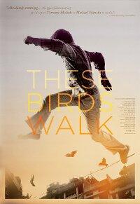 these_birds_walk